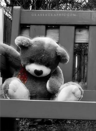 Teddy Bear 62